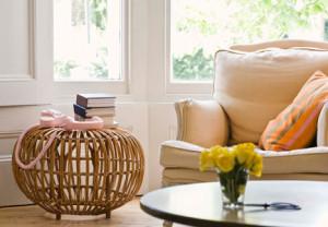 Home, decor, design, decorating, den, living room