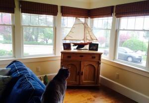 windows, home, decor, living room