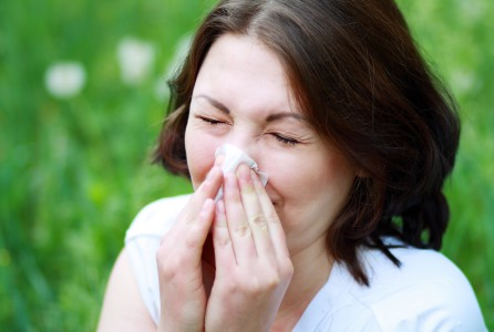 allergy, sneezing, cold, health