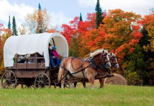 Buena Vista wagon rides 2