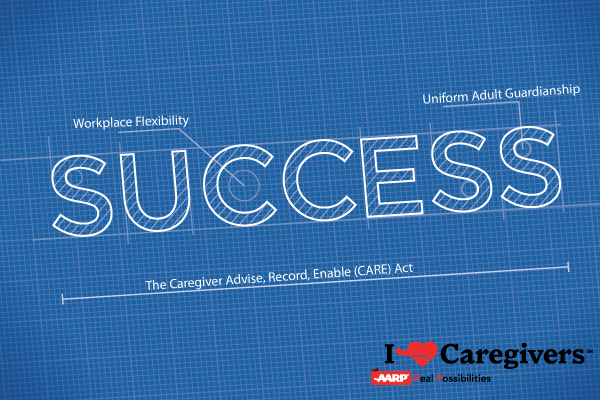 Blueprint for success supporting family caregivers fifty plus life blueprint for success supporting family caregivers malvernweather Image collections