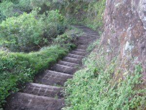Kalaupapa Trail