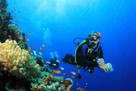 Royal Caribbean Cruise Line offers scuba diving instruction