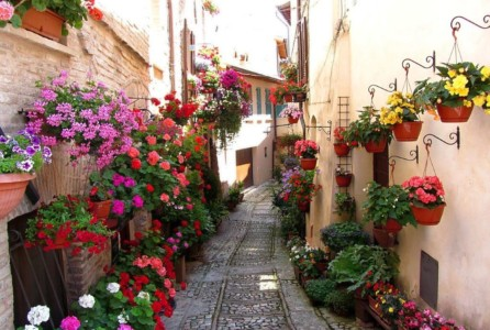 Narrow lane in Spello Umbria[1]