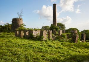 Ruins of Hamilton Family Plantation