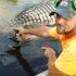 Cajun Bayou: Where Gators, Gumbo