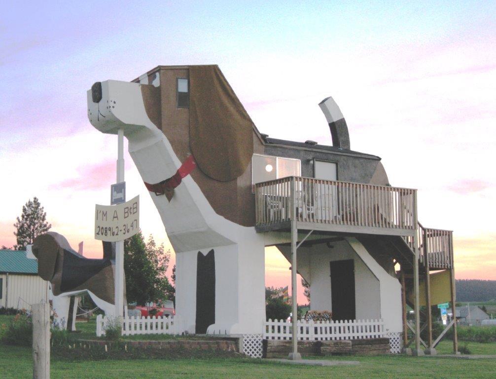 Bark And Stay Dog Resort